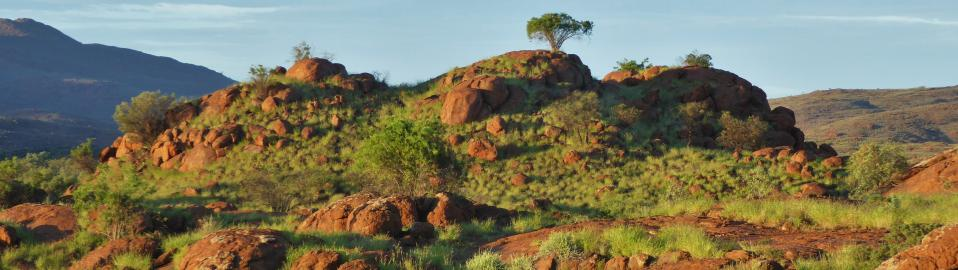 Coordinate Supporting Indigenous Scripture in Central Australia